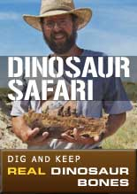 Dinosaur Safari: Dig and Keep Real Dinosaur Bones